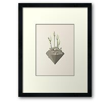 Piece of desert Framed Print