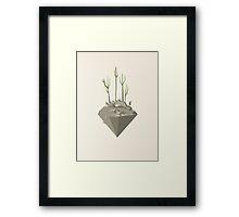 Piece of desert Framed Print