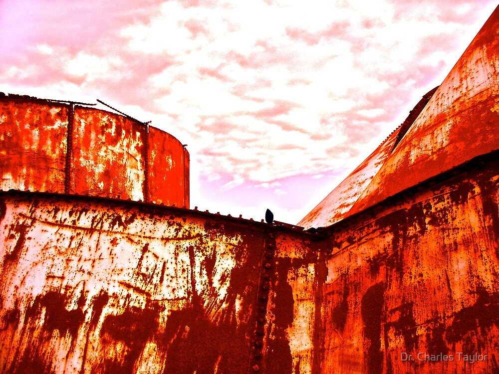 Collapsing Oil Storage Tanks, South Texas by Dr. Charles Taylor