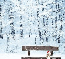 Waiting for Santa by missmoneypenny