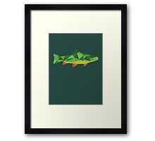 Trout Fish Framed Print
