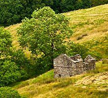 Dentdale Barn by Trevor Kersley