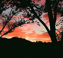 Sunset in San Rafael by mad-as-sin