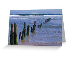 Old Groynes at Sandsend. Greeting Card