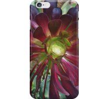 Cactus Flower at Quarry Gardens iPhone Case/Skin