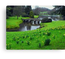 Gently Meandering Canvas Print