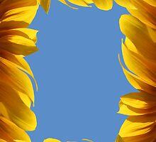 Sunflower frame by Atanas Bozhikov Nasko