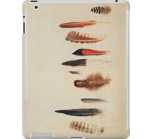 Feather Study no. 1 iPad Case/Skin