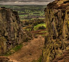 On Ilkley Moor by AJM Photography