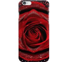 Beautiful Red Rose iPhone Case/Skin