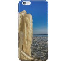 Nature's Sculpture iPhone Case/Skin