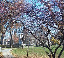 Scoville Park by tpatrick60