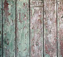 Detail of an old  vertical wooden fence by vladromensky