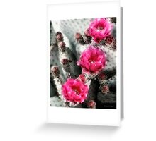Cactus Row Greeting Card