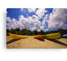 Banana Boats Canvas Print