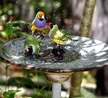 Communal Bath by Gail Falcon