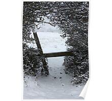 Patern Snow Trail Poster
