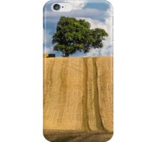 Lone tree on the brow iPhone Case/Skin