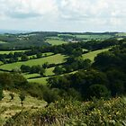 Somerset At Its Best by Alexandra Lavizzari