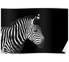 Black & White on Black Poster