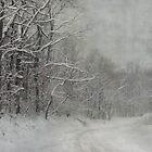 Winter's Grip by enchantedImages