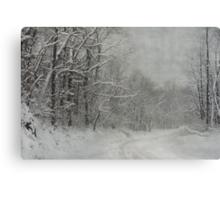 Winter's Grip Canvas Print