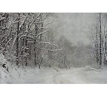 Winter's Grip Photographic Print
