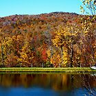 Fall Colors in Vermont by A. Kakuk