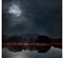 Blue Moon by Mary Ann Reilly