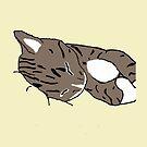 Sleepy Kitty by TesniJade
