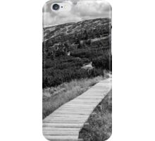 Black and White Tundra Mountains iPhone Case/Skin