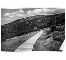 Black and White Tundra Mountains Poster