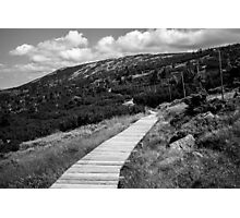 Black and White Tundra Mountains Photographic Print