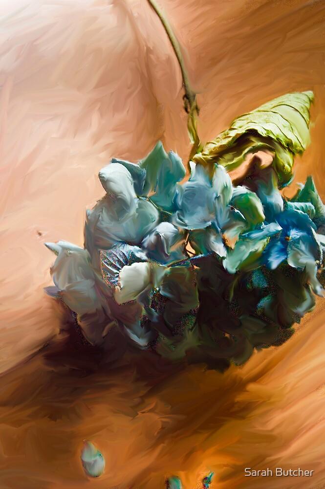 Hydrangea on the Hardwood Floor by Sarah Butcher