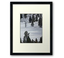 Shadows on the Snow Framed Print