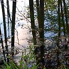 Waterlines by AsEyeSee