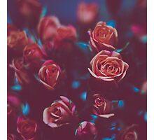 Botánico Oscuro Photographic Print
