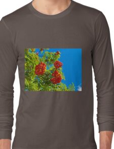 Rowan tree  with red berries Long Sleeve T-Shirt