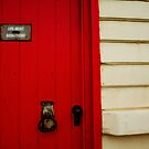 The Red Door by Trish  Anderson
