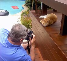 Wild life Photographer at work by Roy  Massicks