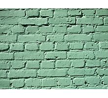 Fragment of a green brick wall  Photographic Print