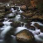 Autumn 2010 GSMNP by ThomasRBiggs