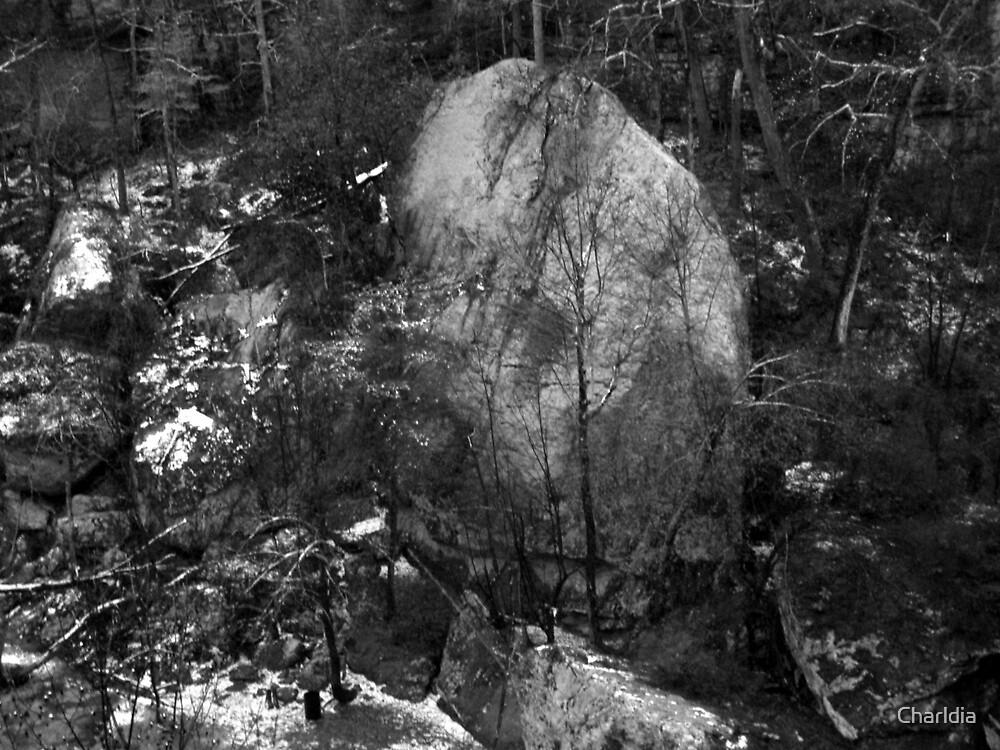 Looks Like an Elephant Rock to Me by Charldia