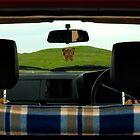 Where we're going, we don't need roads by Luke Stevens