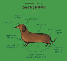 Anatomy of a Dachshund Kids Tee