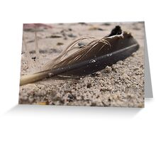 Beach Feather Greeting Card