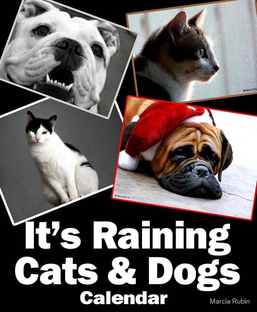 It's Raining Cats & Dogs - Calendar  by Marcia Rubin