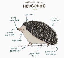 Anatomy of a Hedgehog Kids Tee