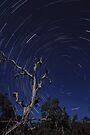 Near Side of the Blue Moon by Sean Farrow
