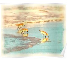 Sandpipers Along the Shore - Digital Painting Poster